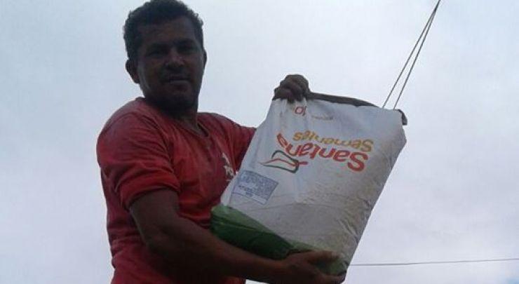 Entregas das sementes destinadas aos agricultores da cidade