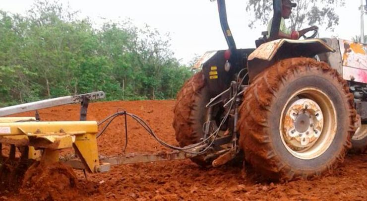 A Prefeitura Municipal de Venha-Ver em parceria com a Secretaria de Agricultura deram início ao Programa Corte de Terras